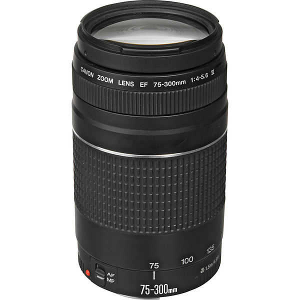 photo Canon 75-300mm f/4-5.6 III